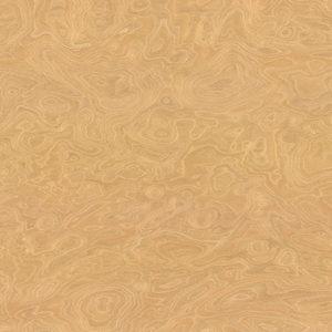 Koren Yasenya Artikul_ 1S 30/E1/RRO