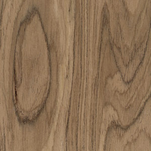 Oreh Noble Walnut Artikul Noble Walnut